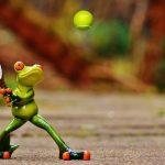 テニスをこれから始めたい方へ【スクールに行く前に】