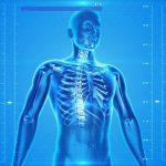 腹筋ローラー 効果は身体が教えてくれます